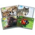 Альбом А4 для малювання Animal Planet, тварини