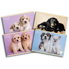 Альбом A4 для малювання Rachael Hale, собаки